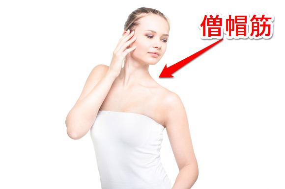 女性向けの簡単に出来る僧帽筋の筋トレ方法