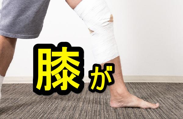 膝が痛くてバーベルスクワットが出来ないので代わりにコレをした
