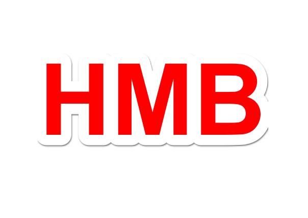 マッスルエレメンツは、評判のHMBサプリの中で注目株